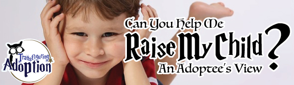 can-you-help-me-raise-my-child-adoptees-view-header