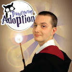 gryffindor-magic-wand-transfiguring-adoption-hi-res
