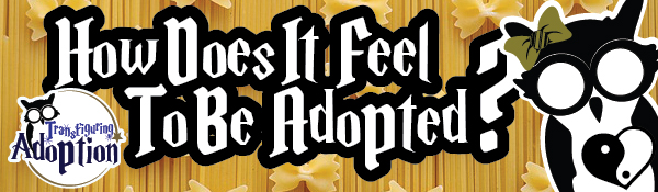 how-does-it-feel-to-be-adopted-infant-adoption-header