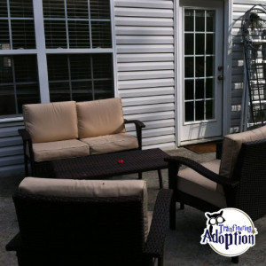 tennessee-home-adoption-outside-patio