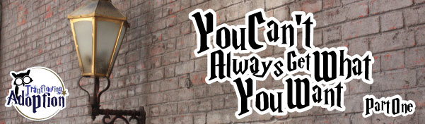 you-cant-always-get-what-you-want-transfiguring-adoption-banner