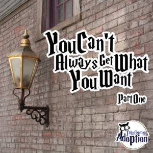 you-cant-always-get-what-you-want-transfiguring-adoption-social-media