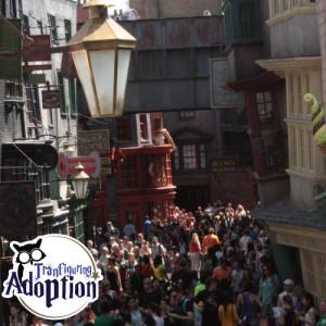 diagon-alley-universal-orlando-crowds-transfiguring-adoption