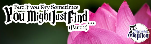 you-might-just-find-part-2-adoption-story