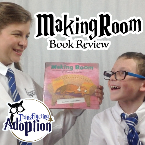 making-room-phoebe-koehler-book-review-pinterest