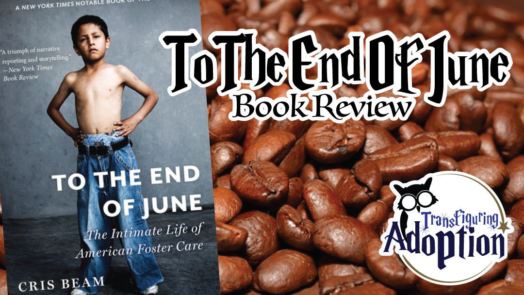 to-the-end-of-june-book-review-transfiguring-adoption-facebook