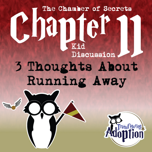 3-Thoughts-About-Running-Away-Chapter-11-Chamber-Secrets-pinterest