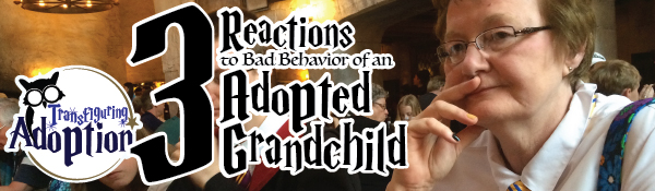 3-reaction-to-bad-behavior-in-adopted-grandchild-header