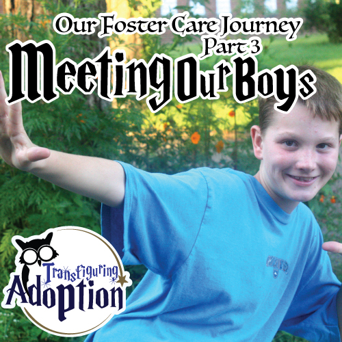 our-foster-care-journey-part-03-meeting-our-boys-pinterest