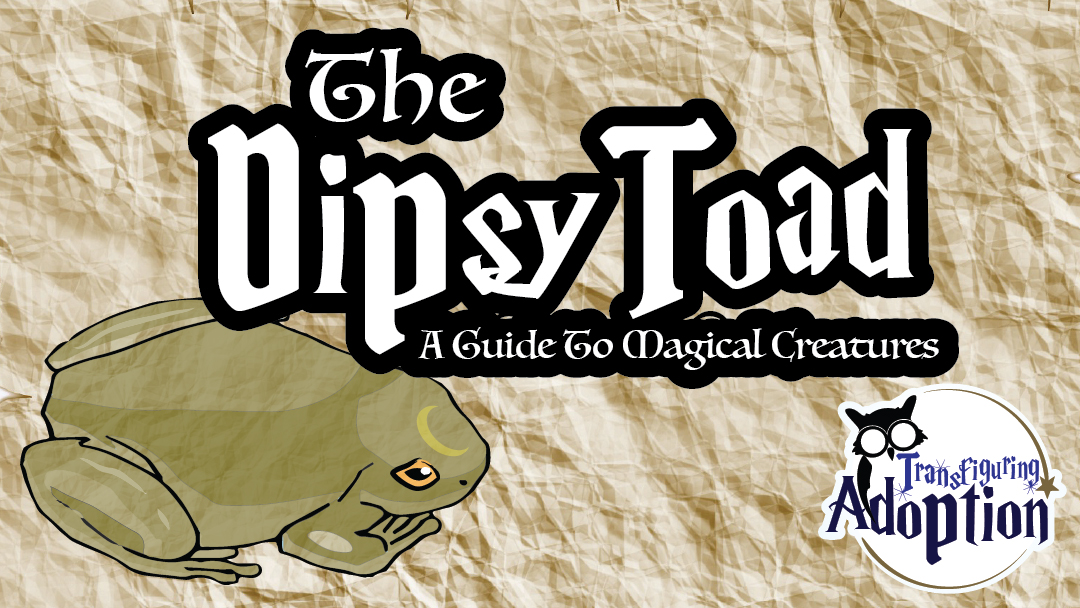 dipsy-toad-guide-to-magical-creatures-transfiguring-adoption-facebook