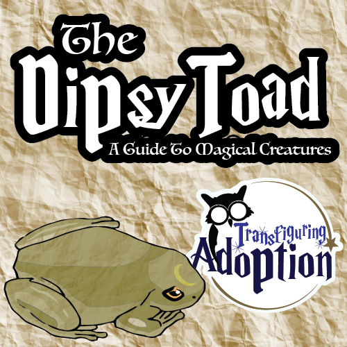 dipsy-toad-guide-to-magical-creatures-transfiguring-adoption-pinterest