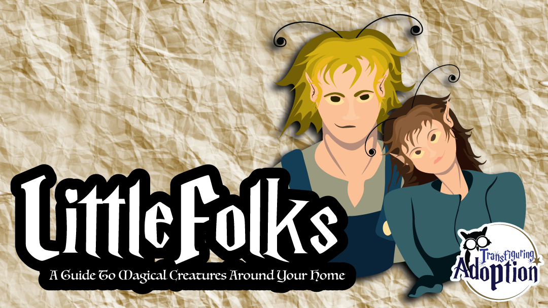 little-folks-magical-creatures-around-your-home-fantastic-beasts-transfiguring-adoption-facebook