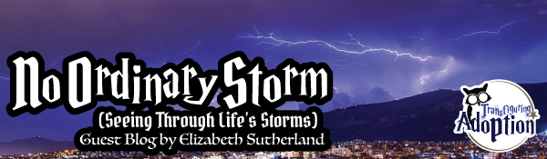 no-ordinary-storm-elizabeth-sutherland-header