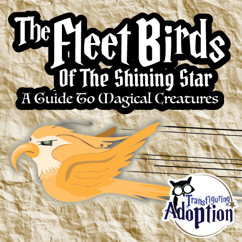 fleet-birds-shining-star-magical-creatures-square