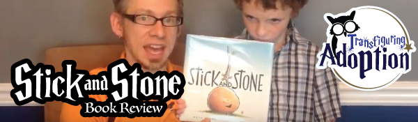 stick-and-stone-beth-ferry-book-review-header