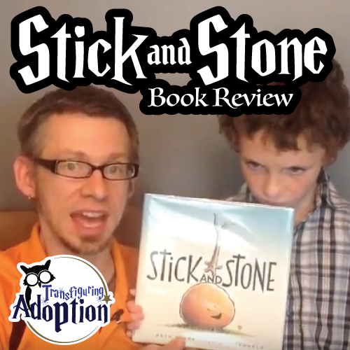 stick-and-stone-beth-ferry-book-review-square