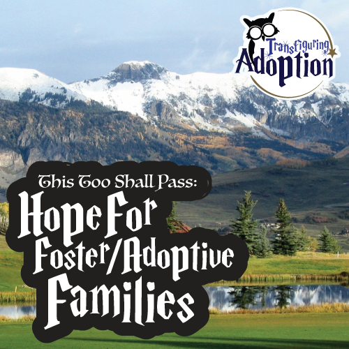 this-too-shall-pass-hope-foster-mom-transfiguring-adoption-square
