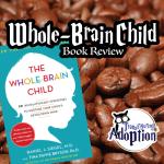 whole-brain-child-book-review-square