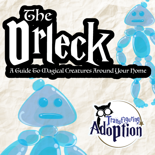 drleck-magical-creature-transfiguring-adoption-square