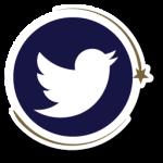 TA-twitter-app-button