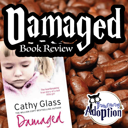 Damaged-cathy-glass-book-review-square