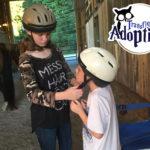 transfiguring-adoption-equine-learning