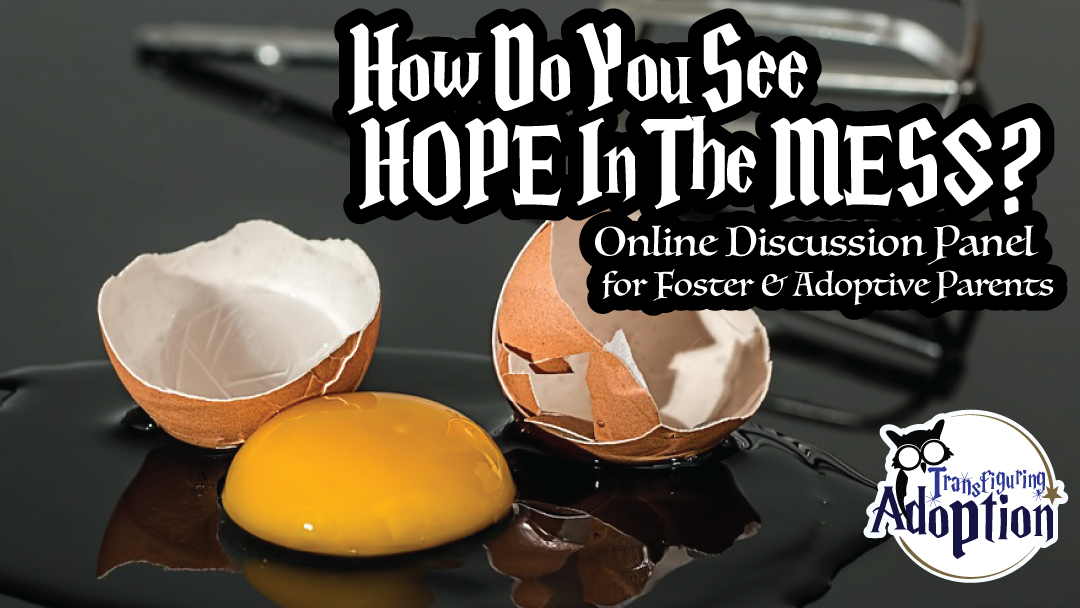 how-do-you-see-hope-in-the-mess-discussion-panel-rectangle