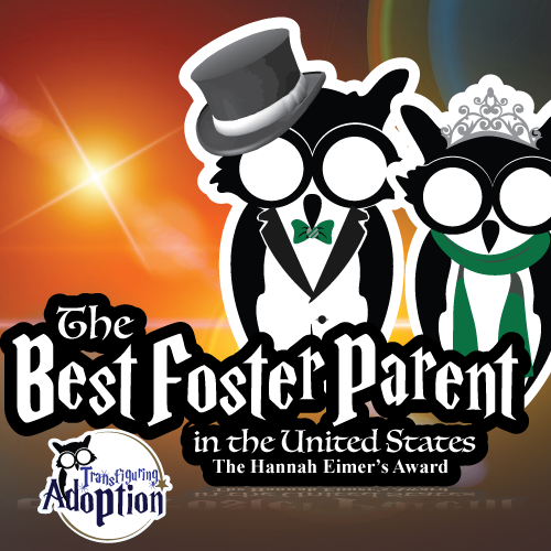 best-foster-parent-united-states-hannah-eimers-award-square