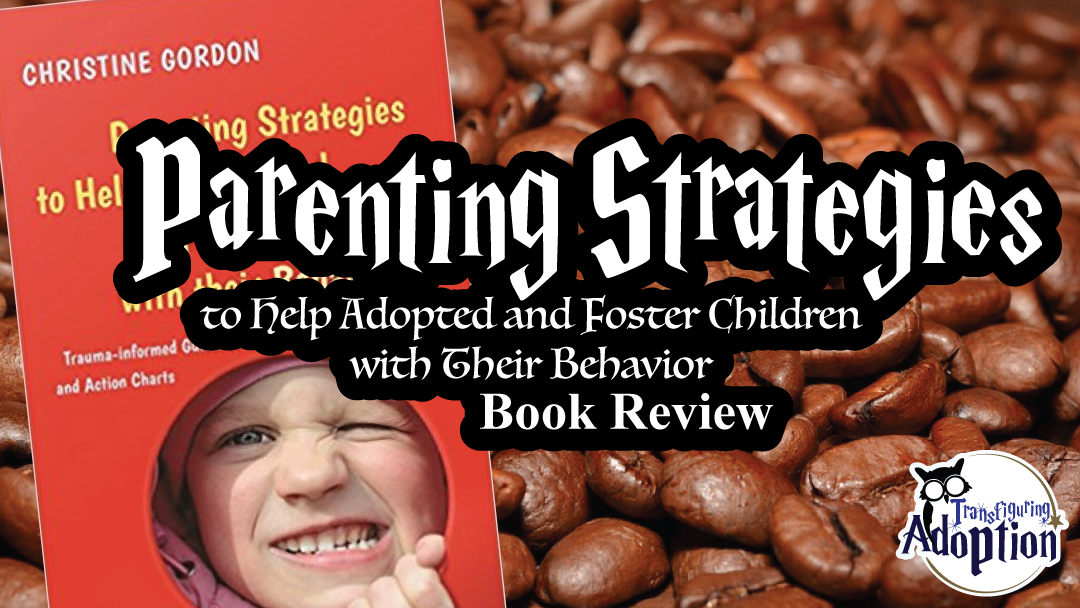 parenting-strategies-help-adoptive-foster-children-behavior-book-rectangle