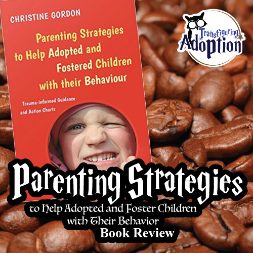 parenting-strategies-help-adoptive-foster-children-behavior-book-square