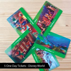 disney-world-tickets-transfiguring-adoption-contest