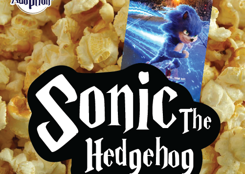 TA-graphics-Movie-Sonic-04